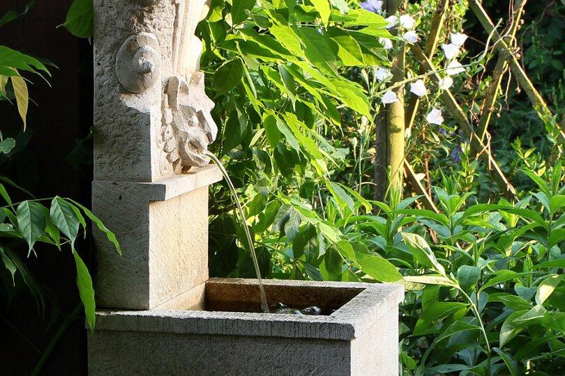 farnbrunnen